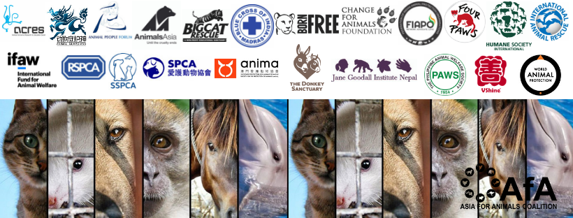 Asia for Animals Coalition