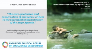 World Animal Net Co-Authors Blog on the United Nations Sustainable Development Website!