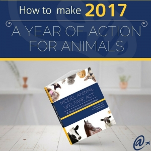2017: A Year of ACTion for Animals!