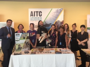 The Animal Issues Thematic Cluster at the United Nations - Representing Animals within the Sustainable Development Agenda