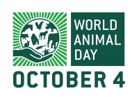 "Tell Google to Celebrate World Animal Day by Creating a Google ""Doodle""!"