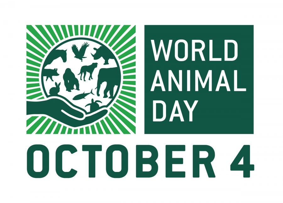 World Animal Day 2016: Let's Celebrate Animals Every Day