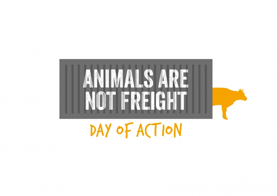 Urgent! Animals are not Freight. End the long distance transport of live animals