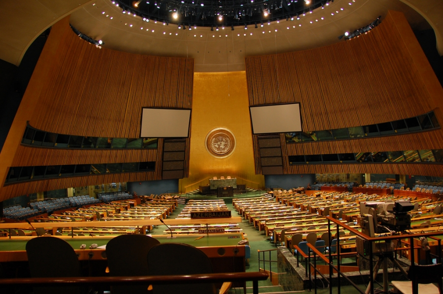 Sustainable Development Goals and Animal Issues: Preparing for the UN's High Level Political Forum