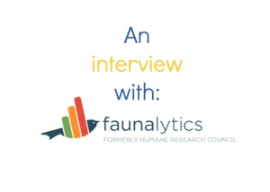 Faunalytics: A Standout Charity Helping Animal Advocates