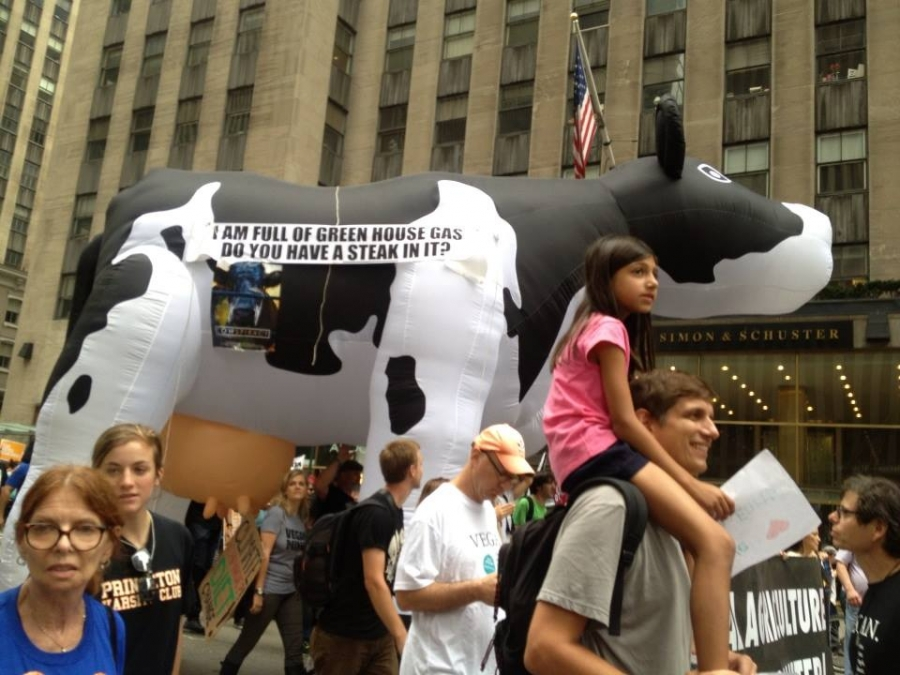 Six Reasons Animal Advocates Should Participate in the People's Climate March (and Why Environmentalists Should Listen to Them)
