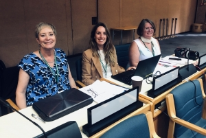 Negotiations on a Post-2020 Global Biodiversity Framework - Updating the Strategic Plan of the Convention on Biological Diversity